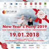New Year's Party 2019